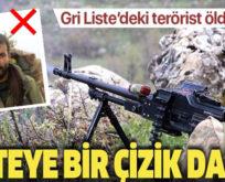 GRİ KATEGORİDE ARANAN TERÖRİST SİİRT'İN BAYKAN İLÇESİNDE ÖLDÜRÜLDÜ