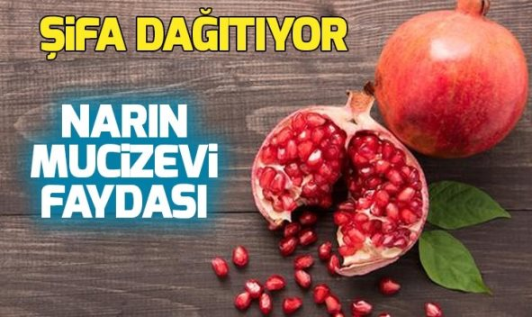 NARIN FAYDALARI SAY SAY BİTMİYOR!..
