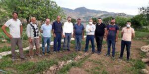 BAYKAN'DAN ANADOLU'YA 'FİDE' İHRACATI