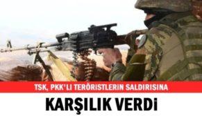 PERVARİ'DE PKK'LILARDAN TACİZ ATEŞİ