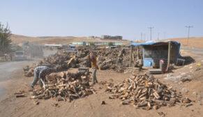 Siirt'te Odun Satışlarında Artış!